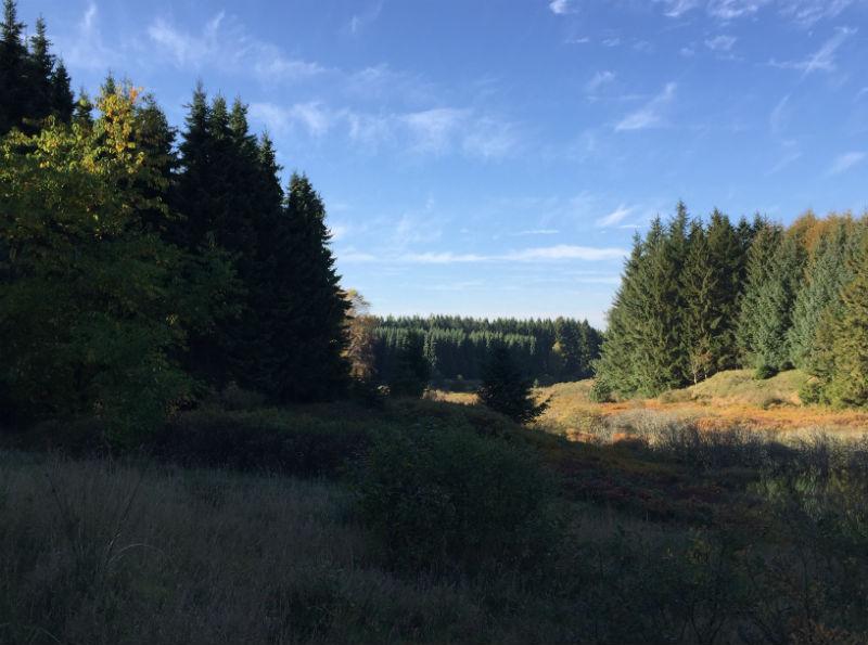 Naturområde, Vestjylland