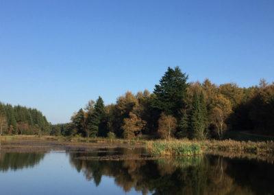 Naturområde i Vestjylland