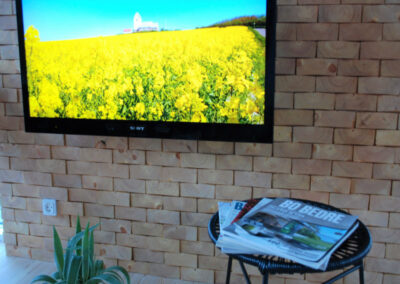 Wall decoration of solid wood. TV screen, table with magazines and flower
